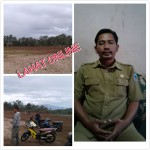 PhotoGrid_1486382940735